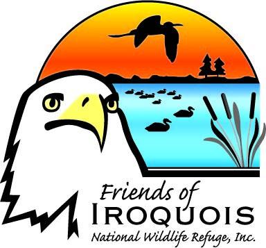 logo-friends_a